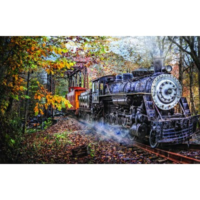 SunsOut - 1000 pieces - Celebrate Life Gallery - Train's Coming