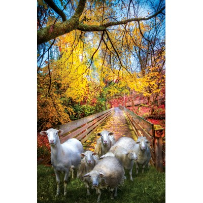 SunsOut - 550 pieces - Celebrate Life Gallery - Sheep Crossing