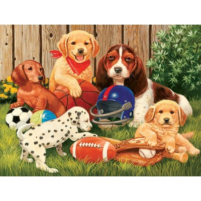 SunsOut - 300 pieces - XXL Pieces - Sports Fans