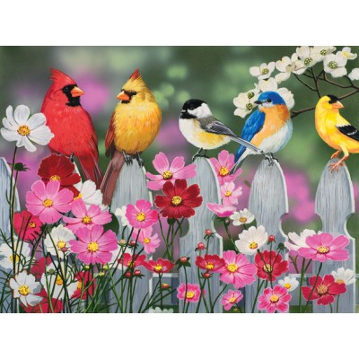 SunsOut - 500 pieces - XXL Pieces - Songbirds and Cosmos