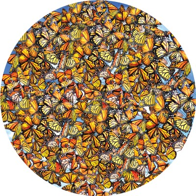 SunsOut - 1000 pieces - Lori Schory - Monarch Frenzy