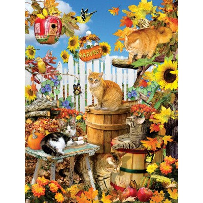 SunsOut - 300 pieces - XXL Pieces - Lori Schory - Harvest Kittens