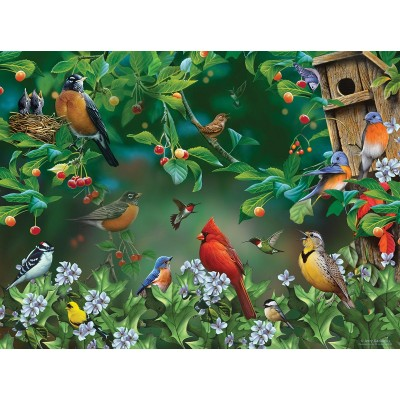 SunsOut - 1000 pieces - Jerry Gadamus - Bird Festival