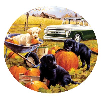 SunsOut - 500 pieces - Pumpkin Patch