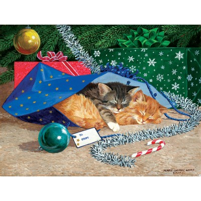Puzzle  Sunsout-51507 XXL Pieces - Nap Sack Cat